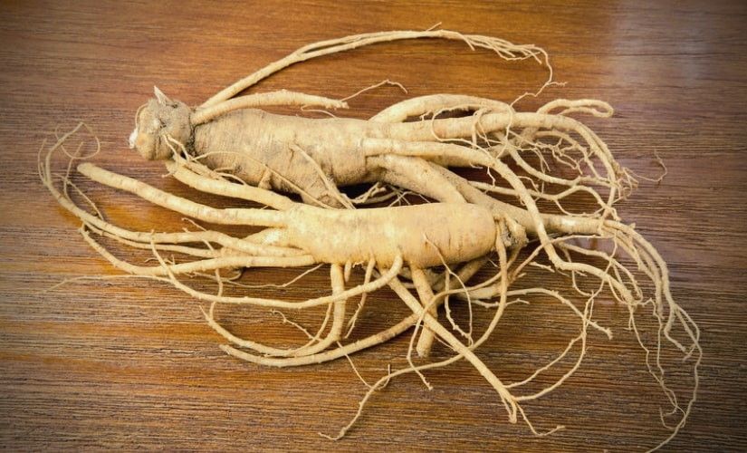 Panax Ginseng as a natural testosterone boosting ingredient