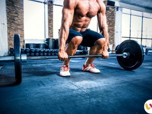 Best Strength Training Exercises for Beginners